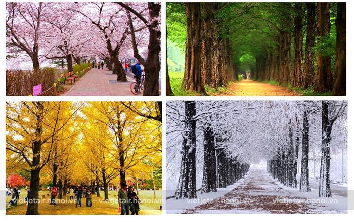 Khí hậu Hàn Quốc 4 mùa đều rất thích hợp cho việc du lịch