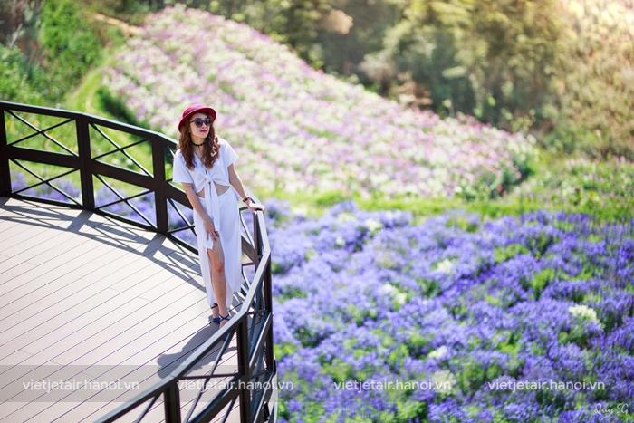 Thung lũng hoa Đà Lạt