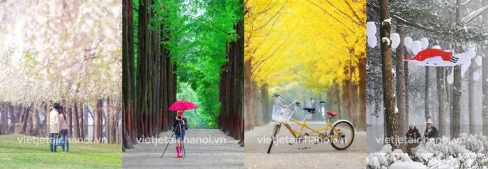 Bốn mùa ở Seoul