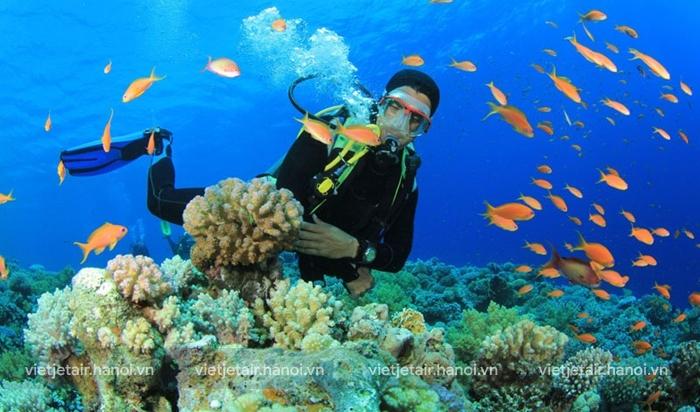 Đến với các vịnh đảo tại Nha Trang bạn có thể tham gia vào các hoạt động biển