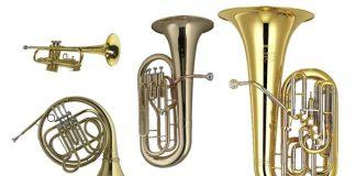 Các loại nhạc cụ được phép mang lên máy bay