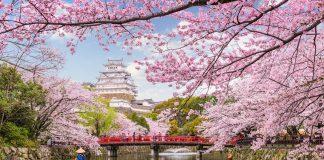 Lễ hội hoa anh đào Nhật Bản diễn ra vào mùa xuân